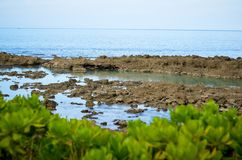 Hajliten vik, Oahu HI Royaltyfria Foton