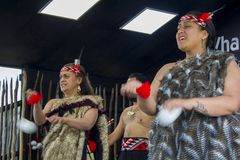 Haka för traditionell dans för maori arkivfoto