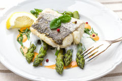 Hake fillet with asparagus foam sauce Royalty Free Stock Photo