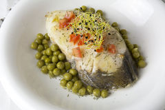 Hake fillet with tomato and sprouts, Royalty Free Stock Image
