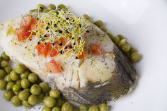 Hake fillet with tomato and sprouts, Royalty Free Stock Photo
