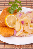 Hake fillets and potato salad Royalty Free Stock Images