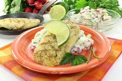 Hake with lime. On potato salad and parsley Stock Images