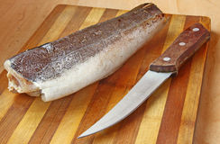 A hake is silvery on a table Stock Image
