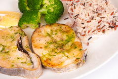 Hake slices Stock Images
