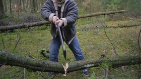 Hakkend hout met een bijl stock video