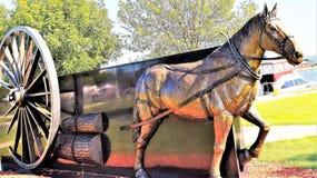 Hakkende Paardkar Royalty-vrije Stock Foto's