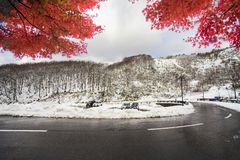 Hakkoda Mountains Royalty Free Stock Photography