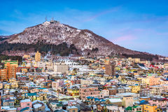 Hakodate Mountain And Skyline Royalty Free Stock Images