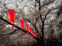 HAKONE, ЯПОНИЯ - 2-ОЕ ИЮЛЯ 2017: Письма Japanesse в красном фонарике с вишневыми цветами красивого вида позади в Сакуре Стоковые Изображения