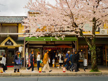 HAKONE, JAPÃO - 2 DE JULHO DE 2017: Povos não identificados que andam no distrito de Higashiyama com flores de cerejeira a mola Fotos de Stock Royalty Free