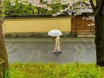 HAKONE, JAPÓN - 2 DE JULIO DE 2017: Mujer no identificada con un paraguas que camina en el distrito de Higashiyama con la cereza Imagen de archivo libre de regalías