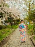 HAKONE JAPAN - JULI 02, 2017: Den oidentifierade kvinnan som går och tycker om i hanami, parkerar under säsong för körsbärsröd bl Royaltyfria Foton