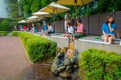 HAKONE JAPAN - JULI 02, 2017: Deras oidentifierad refresing för folk foots insidan av vatten på Hakone det frilufts- museet eller Royaltyfri Bild
