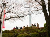 HAKONE JAPAN - JULI 02, 2017: Det oidentifierade folket som går och tycker om i hanami, parkerar under säsong för körsbärsröd blo Arkivbilder