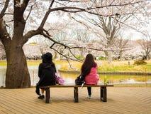 HAKONE JAPAN - JULI 02, 2017: Det oidentifierade folket som sitter i en offentlig stol och tycker om sikten i hanami, parkerar un Royaltyfria Bilder