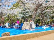 HAKONE JAPAN - JULI 02, 2017: Det oidentifierade folket som sitter i en parkera och tycker om sikten i hanami, parkerar under kör Arkivbild