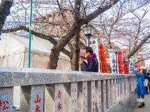 HAKONE JAPAN - JULI 02, 2017: Japanesse bokstäver i en informativ rådgivning, med körsbärsröda blomningar för en härlig sikt bako Arkivbild