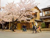 HAKONE, JAPAN - 2. JULI 2017: Nicht identifizierte Leute, die in den Higashiyama-Bezirk mit Kirschblüten der Frühling gehen Lizenzfreies Stockbild