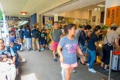 HAKONE, JAPAN - 2. JULI 2017: Nicht identifizierte Leute, die an den Straßen an Hakone-Stadt gehen Lizenzfreie Stockfotografie