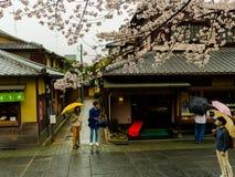 HAKONE, JAPAN - 2. JULI 2017: Nicht identifizierte Leute, gehend in den Higashiyama-Bezirk mit den Kirschblüten Stockfoto