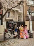 HAKONE JAPAN - JULI 02, 2017: Parkerar bärande kimonon för oidentifierat folk och att gå och ta bilder i hanami under Arkivbild