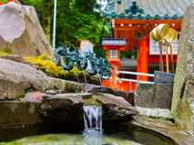 HAKONE JAPAN - JULI 02, 2017: Stäng sig upp av ett damm med en suddiga röda Tori Gate bakom, på den Fushimi Inari relikskrin i Ky Arkivbilder