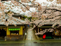 HAKONE, JAPAN - JULY 02, 2017: Higashiyama district with cherry blossoms the springtime in Kyoto Stock Image