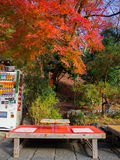 HAKONE, JAPAN - JULY 02, 2017: Juice coin machine in outdoors in autumn landscape, yellow, orange and red Autumn trees Stock Photos