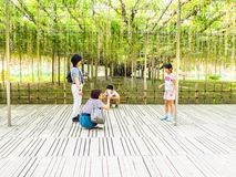 HAKONE, JAPAN - JULY 02, 2017: Unidentified people taking pictures at outdoors of their family in a park in Japan.  Royalty Free Stock Photo