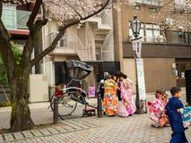 HAKONE, JAPAN - JULY 02, 2017: Unidentified people wearing kimonos, walking and taking pictures in hanami park during Stock Image
