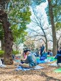 HAKONE JAPONIA, LIPIEC, - 02, 2017: Niezidentyfikowani ludzie siedzi w parku i cieszy się widok w han parku podczas wiśni Fotografia Stock