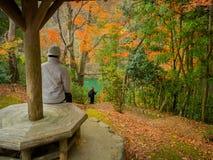 HAKONE JAPONIA, LIPIEC, - 02, 2017: Niezidentyfikowany mężczyzna siedzi innego mężczyzna i cieszy się krajobraz i bierze obrazek Obrazy Royalty Free
