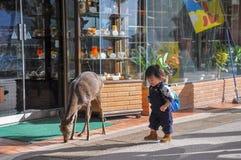Hakone, Japonia: Listopad 6, 2014-Portrait Azjatycka mała dziewczynka zdjęcia royalty free