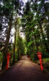 Hakone Shrine. Taken in 2015 stock photos