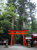 Hakone Shrine's Torii, Japan. Torii gate in bright orange/ red color to reach into Hakone Shrine in Hakone, Japan Stock Photos