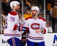 Hal Gill y Mathieu Darche, los Montreal Canadiens Imágenes de archivo libres de regalías