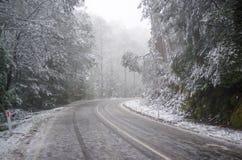 Hal och iskall slingrig bergväg under tungt snöfall, Aus Royaltyfri Bild