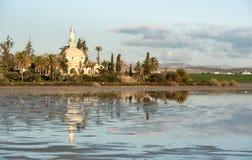 Hala苏丹Tekke回教清真寺拉纳卡塞浦路斯 图库摄影