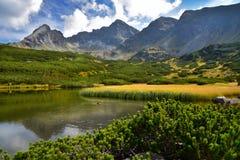 hala gasienicowa的-波兰山Tatra Mountain湖 库存照片
