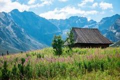 Hala Gasienicowa, Polônia de Zakopane das montanhas de Tatra Fotos de Stock