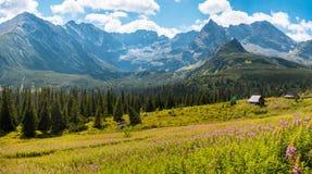 Hala Gasienicowa, Polônia de Zakopane das montanhas de Tatra Imagem de Stock