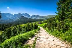 Hala Gasienicowa(Valey Gasienicowa) in Tatra mountains in Zakopa Stock Image