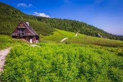 Hala Gasienicowa(Valey Gasienicowa) in Tatra mountains in Zakopa Royalty Free Stock Photo