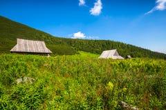 Hala Gasienicowa(Valey Gasienicowa) in Tatra mountains in Zakopa Royalty Free Stock Photos