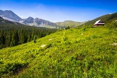 Hala Gasienicowa(Valey Gasienicowa) in Tatra mountains in Zakopa Stock Photography