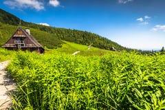 Hala Gasienicowa(Valey Gasienicowa) in Tatra mountains in Zakopa Stock Photos