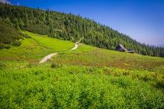 Hala Gasienicowa(Valey Gasienicowa) in Tatra mountains in Zakopa Stock Images