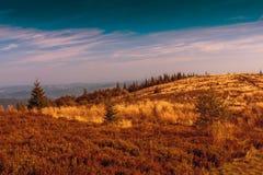 Hala Krupowa. A mountain range in Poland Stock Photo
