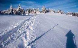 Hala na Malej Raczy mountain meadow in winter Zywiec Beskids mountains on polish - slovakian borders. With snow, narrow hiking trail, trees, photographer shadow Stock Image